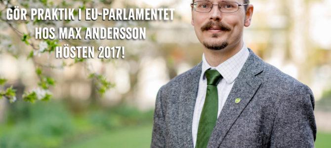 Praktik hos Miljöpartiet i EU-parlamentet för Max Andersson